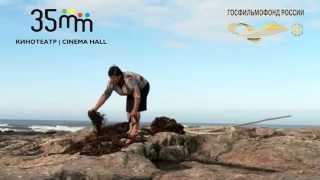 2 ой Фестиваль португальского кино   11 16 ноября, Москва