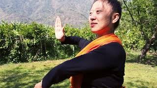 【心咲旅修】阿育吠陀日常療癒・子宮修復淨化・南投山林僻靜 Ayurveda Daily Healing and Womb Purification Workshop at Nantou, Taiwan