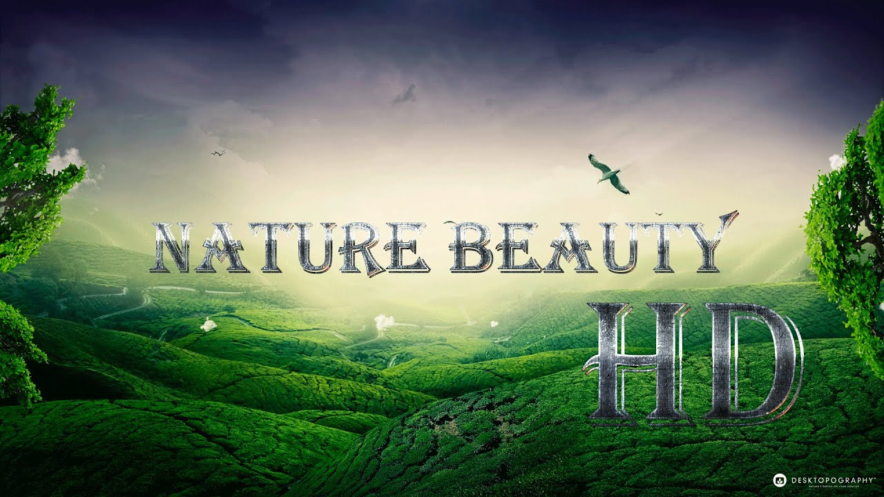 Good Wallpaper Home Screen Scenery - maxresdefault  You Should Have_983911.jpg