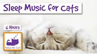 6 Hours of Cat Music to Help your Cats and Kittens Sleep