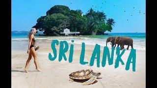 Путешествие по Шри-Ланке 2019. Бентота, Канди, Элла, Удавалаве. Sri-Lanka 2019