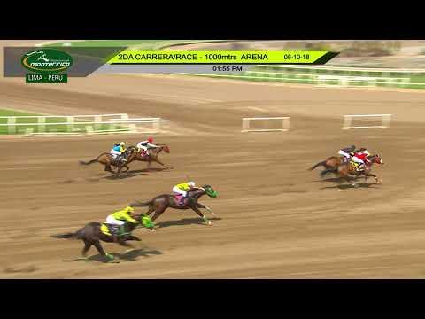 Salchicha (Spin Master) conquista Condicional (1000m-Arena-MONT).