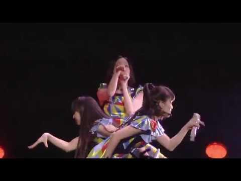 Perfume Nee Live
