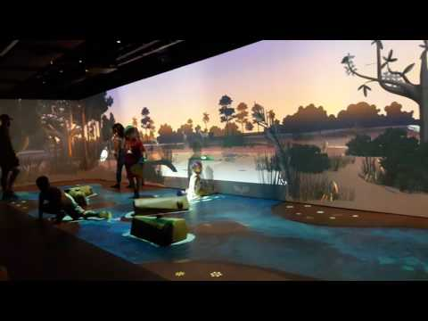 River of Grass Interactive Room Frost Science Miami