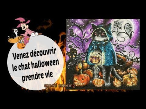 Coloriage Adulte Tuto.Tuto Speed Coloring Le Chat Halloweeeeennnn Coloriage Adulte