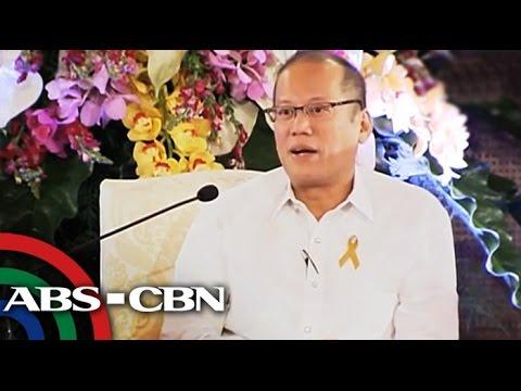 Abad defends PNoy's 'passionate' DAP speech
