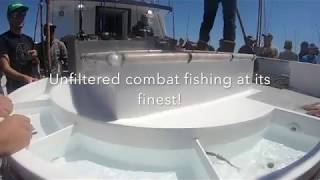 Liberty Sportfishing 5-4-18 Combat fishing for yellowtail