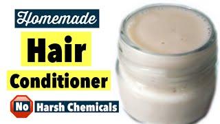 Homemade Hair Conditioner | Hair Moisturiser Treatment At Home | For Dry Damaged Hair | DIY