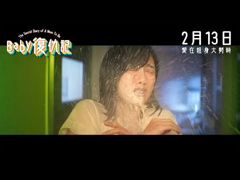 Baby復仇記 (The Secret Diary of a Mom to Be)電影預告