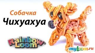 Чихуахуа  Собачка из резинок Rainbow Loom Bands. Урок 297 | Chihuahua dog Rainbow Loom