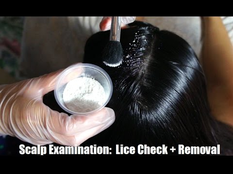 ASMR Scalp Check / Lice Check + Lice Removal REAL PERSON (Plastic Toothpicks, Gloves, Scritching) !!