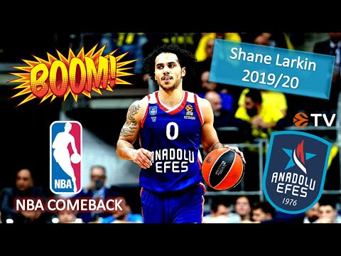 Download Shane Larkin EPIC 2019/20 Best Plays & Highlights ● Historic MVP Season!