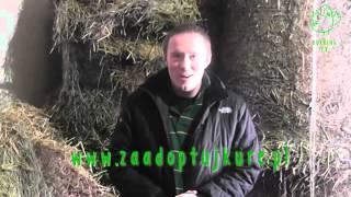 Pan Kura odc.1_Kurking TV