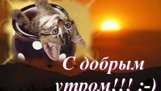 С ДОБРЫМ УТРОМ !!!