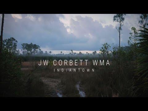 J.W. Corbett Wildlife Management Area, Indiantown, FL - Lumix G7 Cinematic