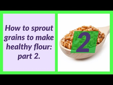 how-to-make-sprouted-flour