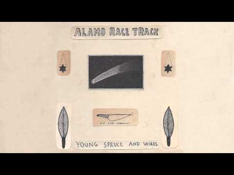 Alamo Race Track - Young Spruce and Wires