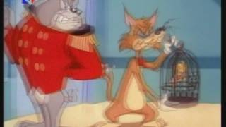 The Tom & Jerry Kids Show - 08b - Hoodwinked Cat