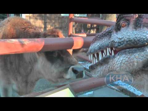 Kojo goes to the Zoo! Animatronic Dinosaur for Hire.