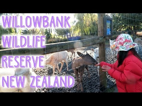 Willowbank Wildlife Reserve Zoo, New Zealand - June 4, 2016