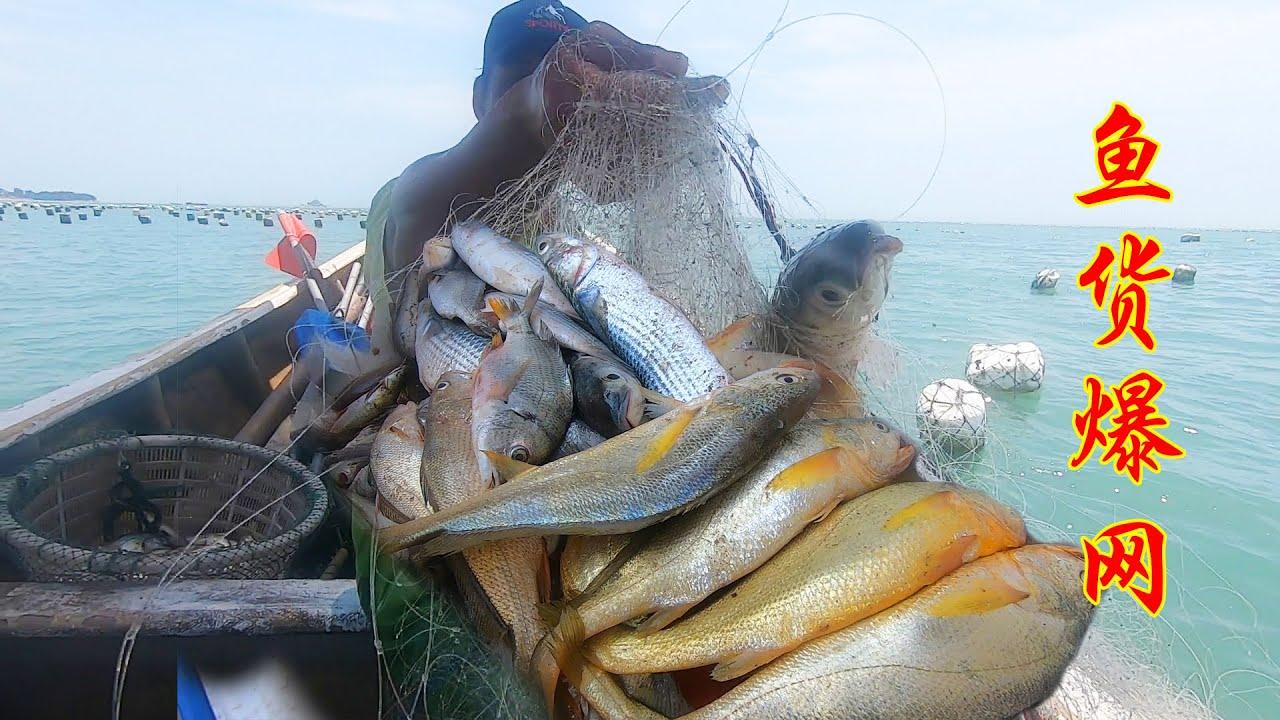 外海成千上万鱼群出动,馒头撒万米巨网围捕,上岸顾客都排队抢购
