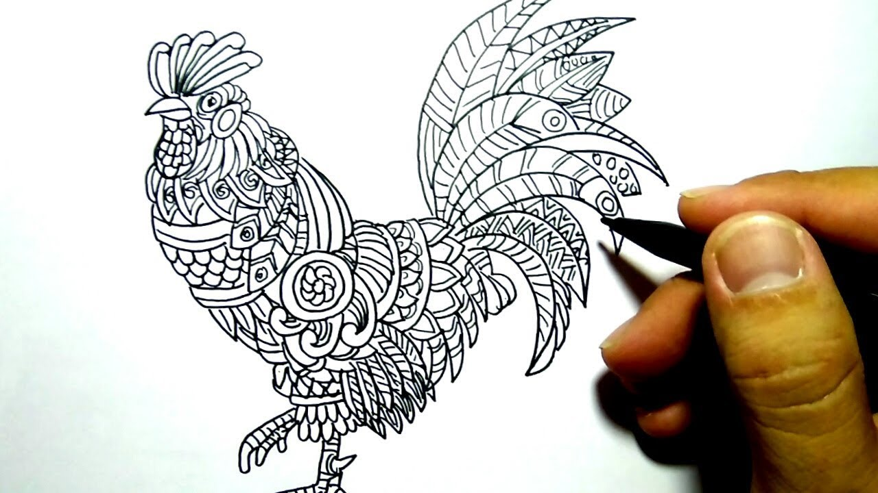 Cara Menggambar Ayam Seni Unik How To Draw Chicken With Art