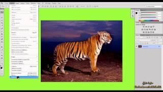 3 - تعديل مظهر الواجهة ( دورة فوتوشوب  Photosop CS6 )