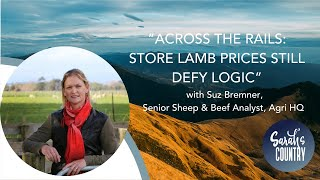 """Store lamb prices still defy logic"" with Suz Bremner, Senior Sheep & Beef Analyst, AgriHQ"