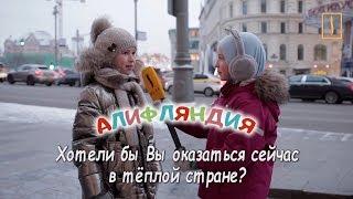 """Опрос """"Алифляндии"""": Хотели бы оказаться в теплой стране?"""