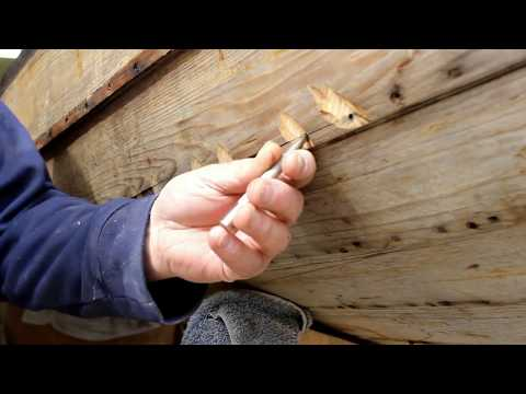Removing a plank