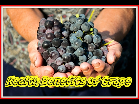 Health Benefits of Grape | 7 Amazing Benefits of Grapes for Health and Skin