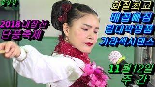 💗버드리 쓰러져 독감기로 병원 치료중 공연 사진찍기 바빠서 힘든공연💗11월12일 주간 2018 내장산 단풍축제 초청 공연