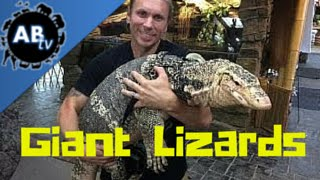 Giant Lizards! SnakeBytesTV : AnimalBytesTV