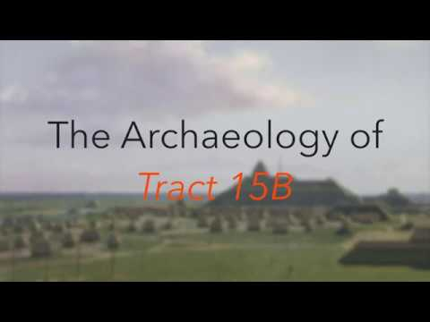 The Archaeology of Tract 15B