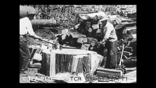 Lumber From Forest To Mill (1926)