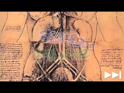 Film DVD / Kunst: LEONARDO DA VINCI / Malerei - Künstler - YouTube