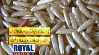 Rice Production Sialkot Pakistan
