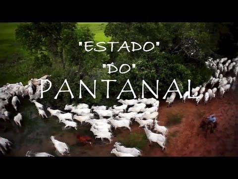 RADIALISTA ( GEORGE NASCIMENTO ) ESTADO PANTANAL )