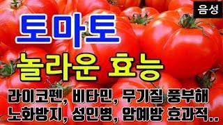 [#토마토효과] 토마토의 놀라운 효능 10가지 (라이코…
