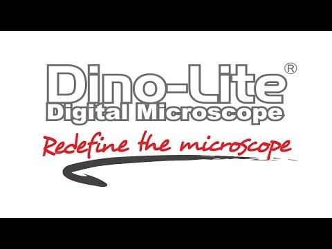 Dino-Lite Digital Microscope Cameras