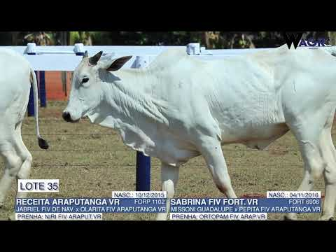 LOTE 35   FORP 1102,FORT 6906