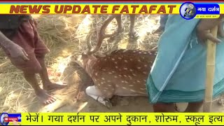 Gaya Darshan News 3rd December 2020 Khabren Fatafat