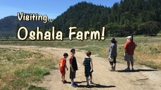 Visiting Oshala Farm: An Organic Local Oregon Farm