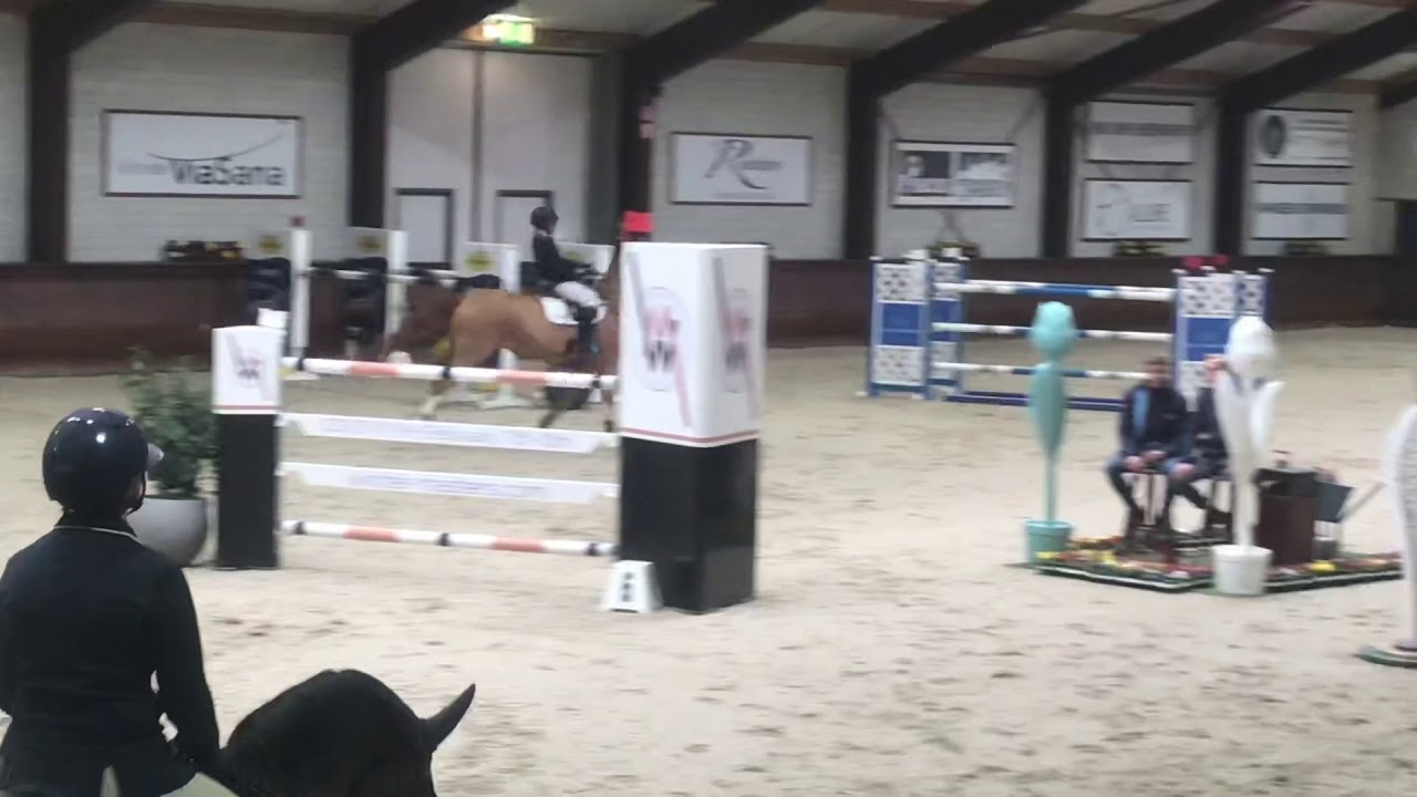 Easy Boy - GP 145 CSI** Kronenberg
