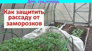 видео Как защитить растения от весенних заморозков