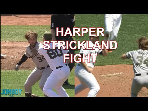 Bryce Harper and