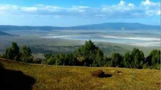.: ◕‿◕ :: Civet Cat @ the Crater   Ngorongoro Conservation Area   Serengeti National Park