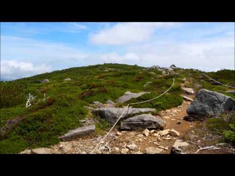 五葉山頂上付近からの景色