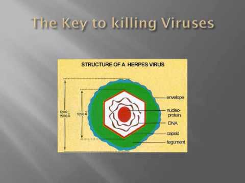 How do i cure herpes - How it works Hidden Truths