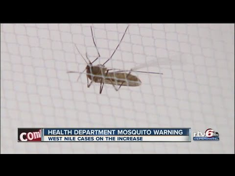 Indiana Health Department issues mosquito warning